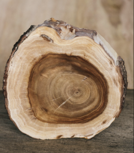 Sustainably farmed Indian sandalwood